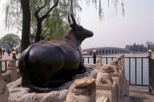 Feng Shui Ox